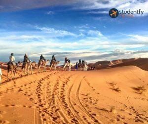 Morocco (13)