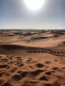 Morocco (20)