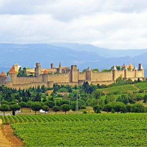 Trip to Carcassonne and Perpignan – 07 March