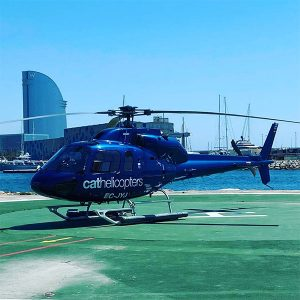Discount Cathelicopters Gallery (1)