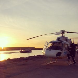 Discount Cathelicopters Gallery (3)